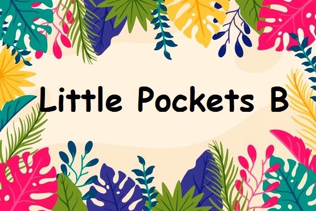 دوره Little Pockets B آموزشگاه زبان سپهر
